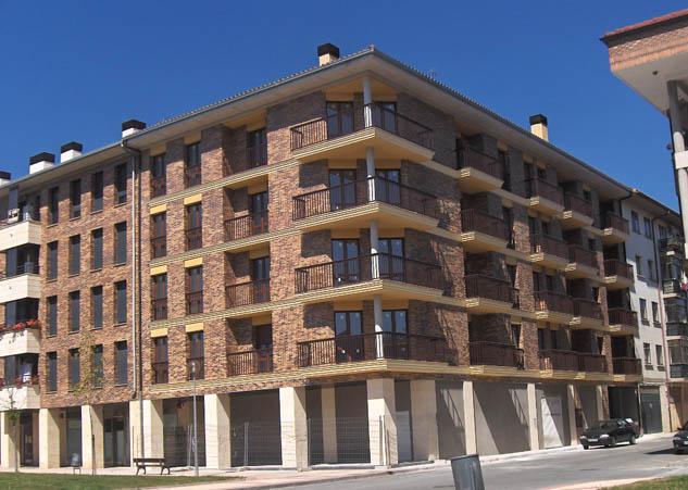 12 viviendas Alsasua 1